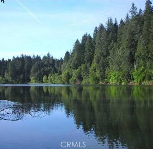 0 Forest Glade, Berry Creek CA: http://media.crmls.org/medias/5c606273-f4d9-4d05-8b3a-92d9b4998dd5.jpg