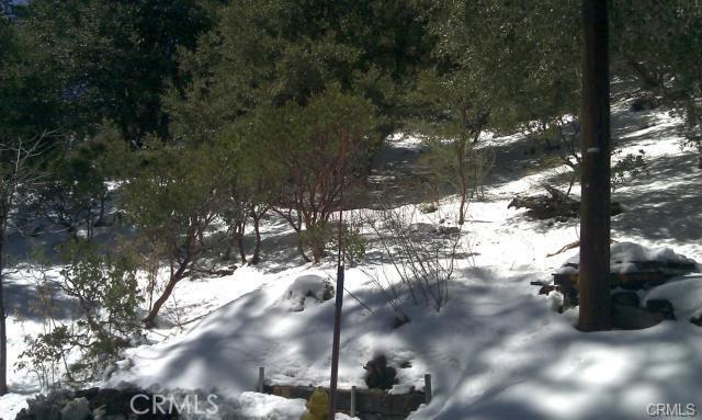 0 Robin Oak Drive, Angelus Oaks CA: http://media.crmls.org/medias/5cb756e0-de2f-4588-8877-88254ecb4233.jpg