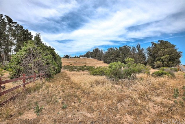 1400 Eucalyptus Road, Nipomo CA: http://media.crmls.org/medias/5dfd8aad-23a2-4cd5-875a-e4f3227064dd.jpg
