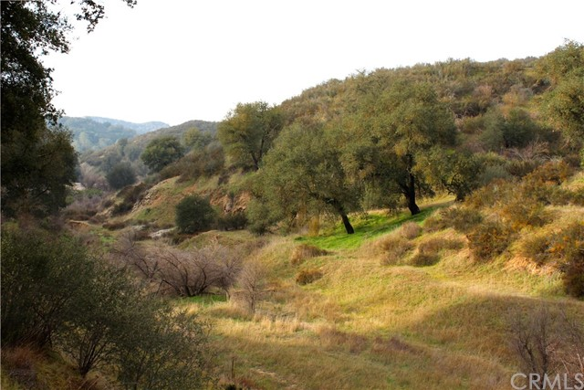 Detail Gallery Image 1 of 26 For 0 Calf Canyon Hwy, Santa Margarita,  CA 93453 - – Beds | – Baths