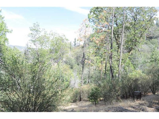 Single Family for Sale at 0 Coyote Trail Cedarpines Park, California United States