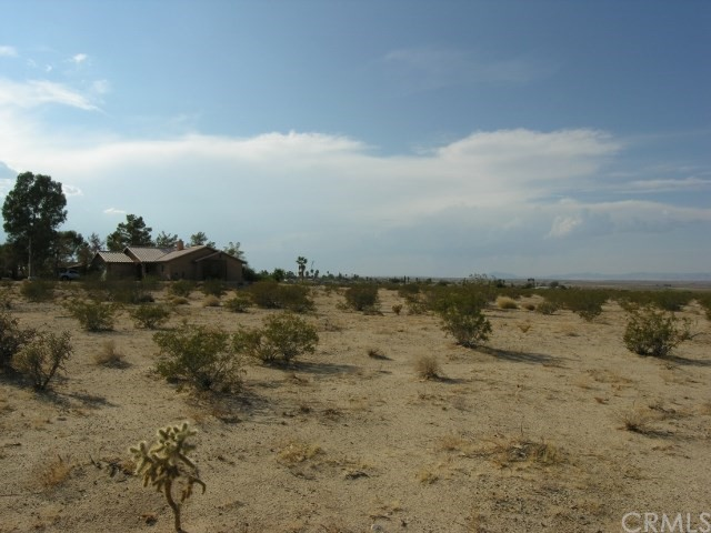 0 Two Mile Road, 29 Palms CA: http://media.crmls.org/medias/5e6e1295-3f49-414b-926b-4a4978890393.jpg