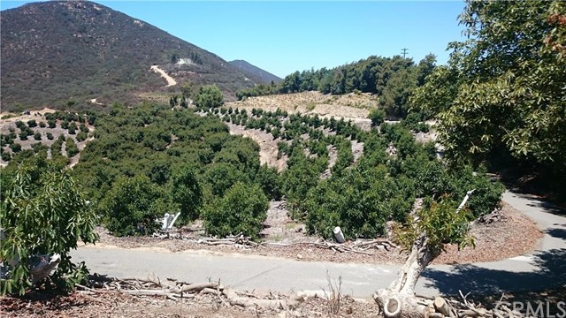 0 Pauma Ridge Road, Pala CA: http://media.crmls.org/medias/5e89c7a7-a9e3-49b9-91aa-9a3db9a63a2e.jpg