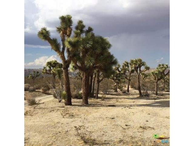 Photo of home for sale at 9999 Mountain View Trail, Yucca Valley CA