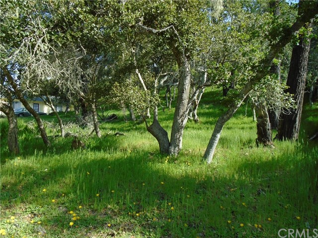 1880  Orville Avenue, Cambria in San Luis Obispo County, CA 93428 Home for Sale
