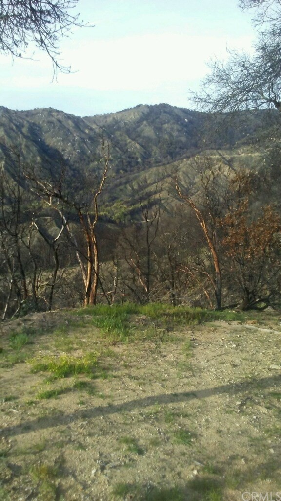 Land for Sale at Palo Colorado Canyon Road Big Sur, California 93923 United States
