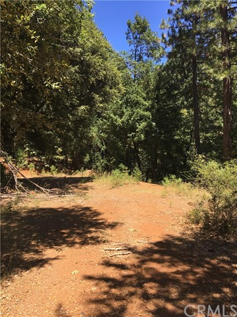 Carol Ann Lane, Forest Ranch, CA 95942