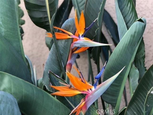 25 Optima, San Clemente CA: http://media.crmls.org/medias/6008893f-7fc5-4ae8-af8d-4b98f842da4f.jpg