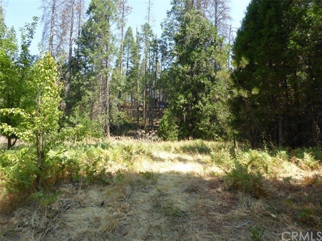 Lot 44 Cascadel Drive, North Fork, CA, 93643