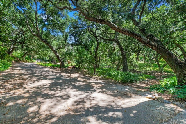 19411 Live Oak Canyon Road