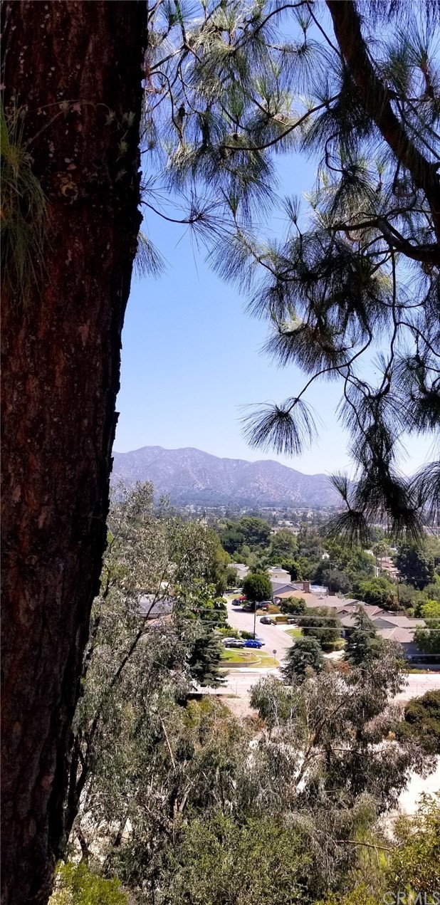 0 Oakmont View Dr, Glendale CA: http://media.crmls.org/medias/60d9b39f-151a-4c6e-8ac8-5dfebf4908e5.jpg