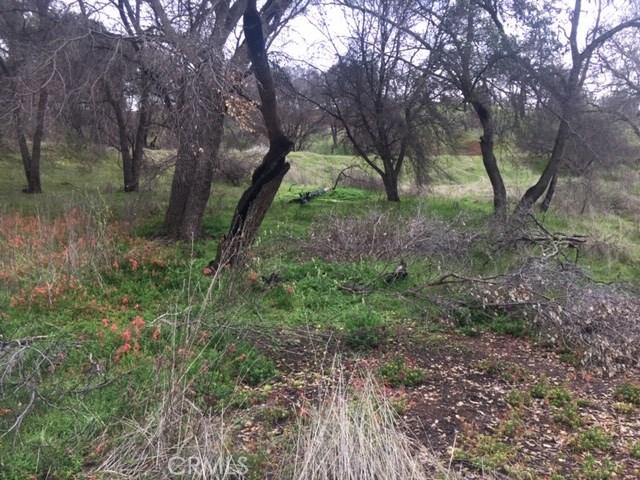 3178 Oak Crest Drive, Clearlake CA: http://media.crmls.org/medias/613c68a1-3a26-441f-a142-7c2fab201a3c.jpg
