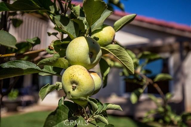122 Orange Park, Redlands CA: http://media.crmls.org/medias/62d7f8cf-4b2b-408b-9f3d-3cf1584f07e7.jpg