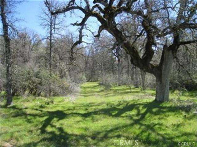 Single Family for Sale at 0 West Oaks Oakhurst, California United States