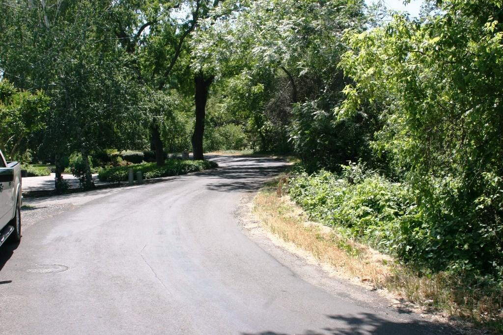 2080 Bidwell Avenue, Chico CA: http://media.crmls.org/medias/63919002-22fc-434a-a1b4-f6245e50d330.jpg