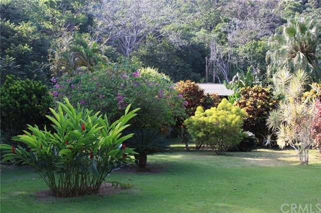 Land for Sale at 100 Matapalo Beach Rd. Other Areas, USA