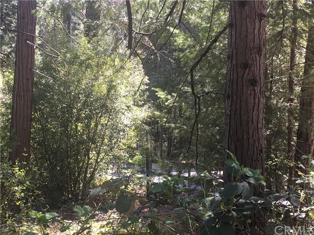 12 Oak Drive Berry Creek, CA 95916 - MLS #: OR18096898