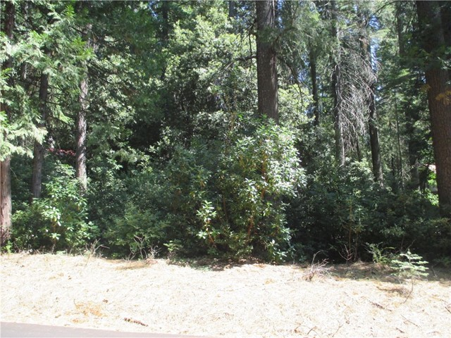 Land for Sale at 11234 Winding Way Clipper Mills, California 95930 United States