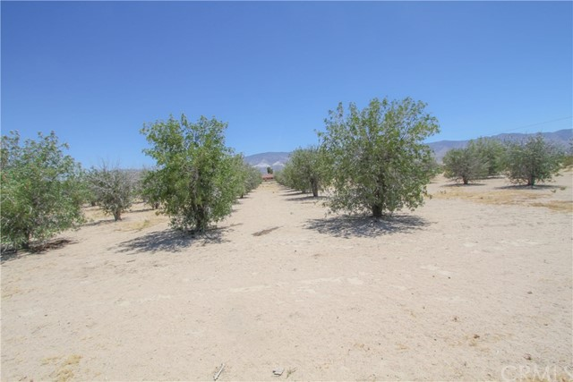 11151 Visalia Avenue Lucerne Valley, CA 92356 - MLS #: SW17139440