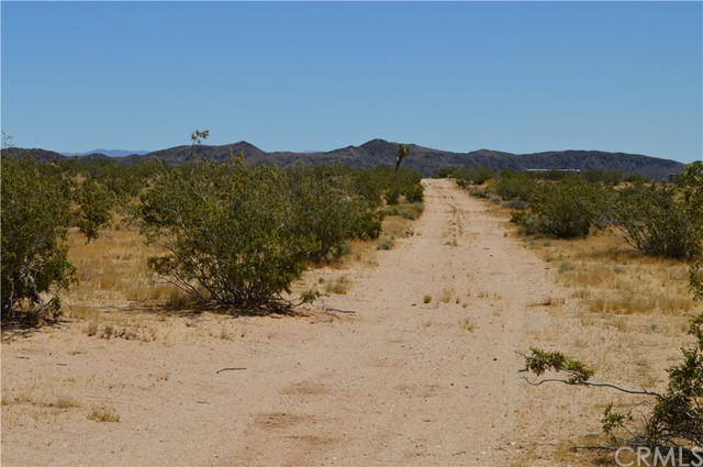 0 Old Dale Road, 29 Palms CA: http://media.crmls.org/medias/654773e5-cd3b-4f30-b9e1-e5613a960871.jpg