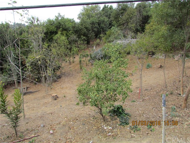 0 Reposado, La Habra Heights CA: http://media.crmls.org/medias/65dace82-848c-4179-9e03-6e11670185a7.jpg