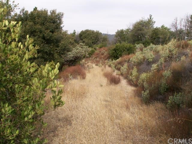 Single Family for Sale at 2 Union Bar Road Feather Falls, California 95940 United States