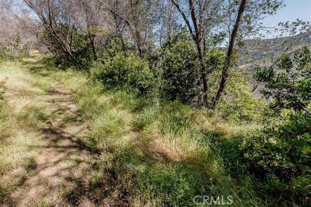 4830 Hwy 49 S, Mariposa CA: http://media.crmls.org/medias/6704b2f9-7982-4d0c-904e-99051b3bdee3.jpg