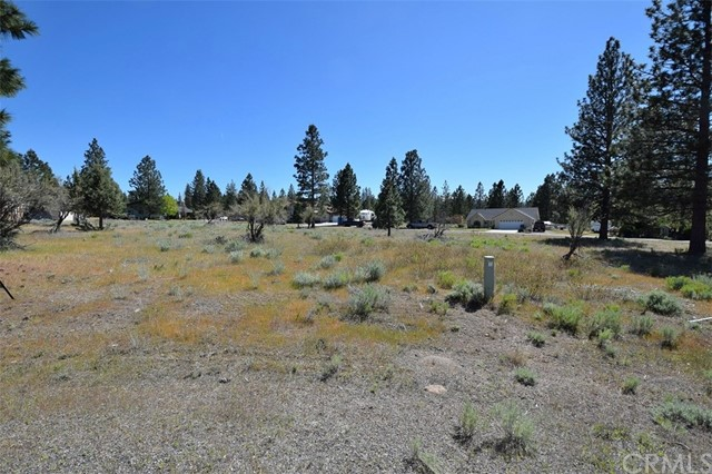 Single Family for Sale at 0 Lot 106 Buffalo Court Weed, California 96094 United States