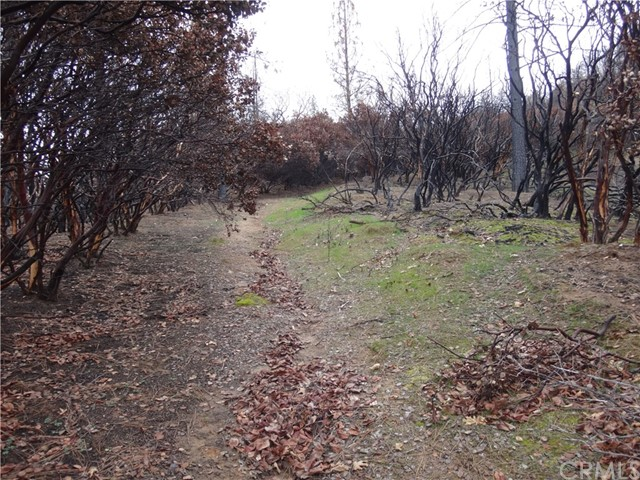 0 Long Point Road Feather Falls, CA 95940 - MLS #: OR18049815