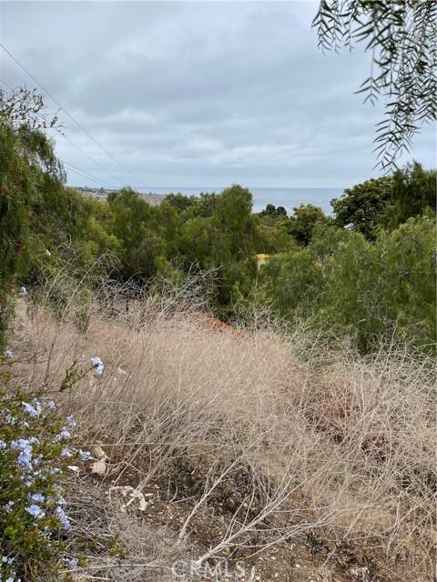 30 Peppertree Drive, Rancho Palos Verdes CA: http://media.crmls.org/medias/67b3bd2f-27fc-4d56-9414-436ec4c7bab1.jpg