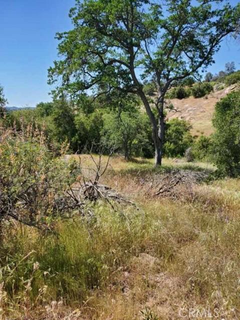 0 Lot 1952 Ranger Circle Drive, Coarsegold CA: http://media.crmls.org/medias/6855a6bd-d877-44fa-89ef-eb87810d7c71.jpg