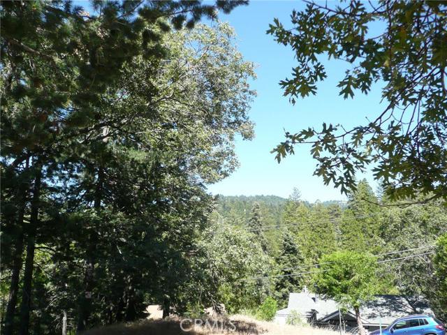 Additional photo for property listing at 24666 Geneva Drive  Crestline, California 92325 United States