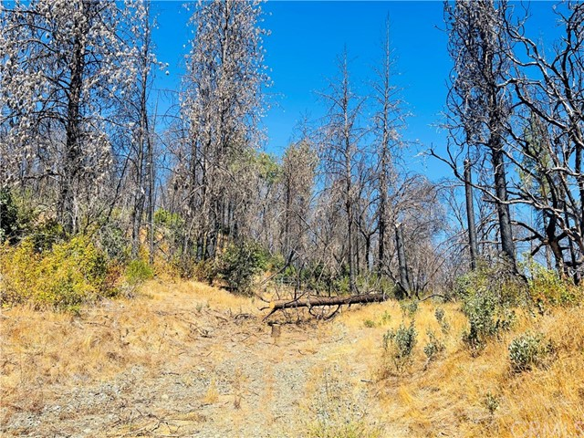 12657 Elk Mountain Road, Upper Lake CA: http://media.crmls.org/medias/695ddd73-f3a8-4a3b-ada2-831c8f7bf380.jpg