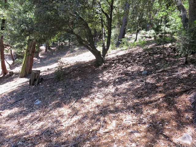 0 Mojave River Road Cedarpines Park, CA 0 - MLS #: EV17201757
