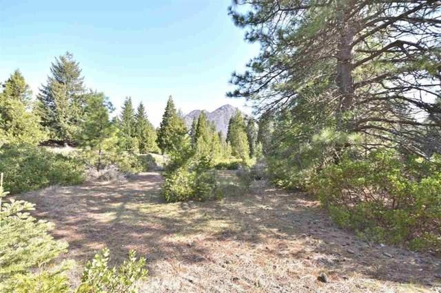 0 Lot 1 Pony Trail, Mount Shasta, CA 96067