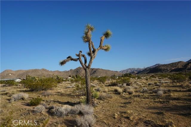 8776 Uphill Road, Joshua Tree CA: http://media.crmls.org/medias/6a96c63e-4e48-4b7d-9d43-e0948332fc0a.jpg