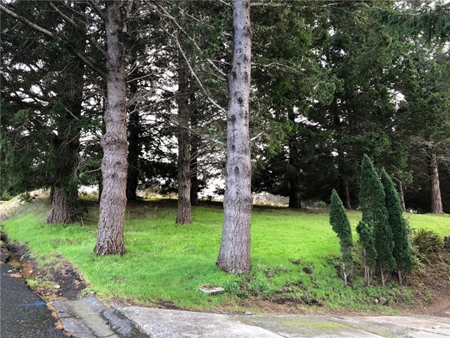 542 Redwood Road, Shelter Cove CA: http://media.crmls.org/medias/6b02e404-a792-47f6-b542-cfe45e164944.jpg
