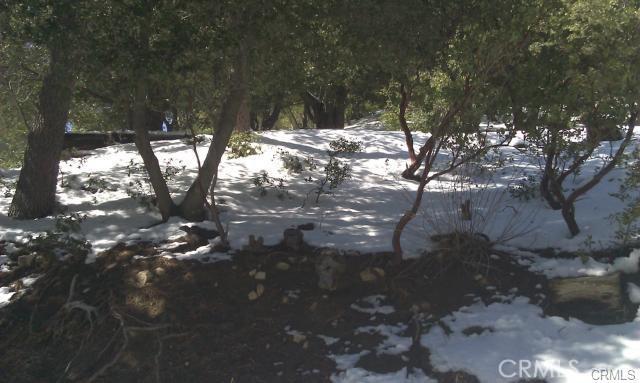0 Robin Oak Drive, Angelus Oaks CA: http://media.crmls.org/medias/6b16b7f8-d920-4fd0-a012-ec02679fdbd0.jpg