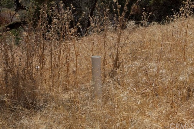 2374 Green Hills Road, Mariposa CA: http://media.crmls.org/medias/6c20843d-d887-4b40-af6d-c27352134261.jpg