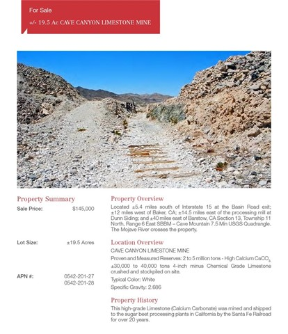 Land for Sale at Basin Road Baker, California United States