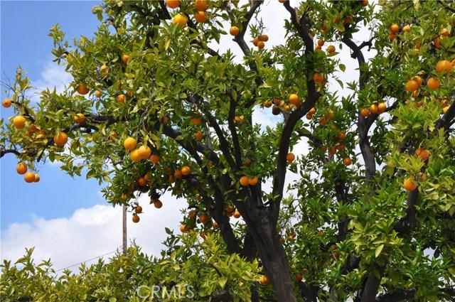 9791 Harvest Ln, Anaheim, CA 92804 Photo 1