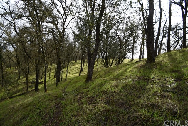 0 Dunstone Drive, Oroville CA: http://media.crmls.org/medias/6f4a2d5e-8305-4496-984b-569476a3ef4d.jpg