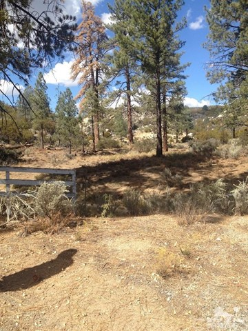 0 Table Mountain Rd. -Lot 20, Mountain Center CA: http://media.crmls.org/medias/6f601da6-8ff5-45e1-b0d9-586dab4601c2.jpg