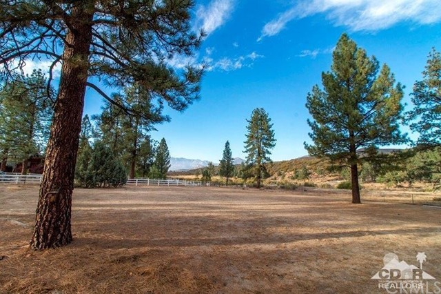 34312 Morris Ranch Road Mountain Center, CA 92561 - MLS #: 217029192DA