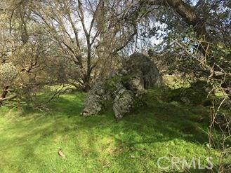 0 Spangle Gold Road, Coarsegold CA: http://media.crmls.org/medias/6fc63386-df49-4201-ab0d-44015aec03db.jpg