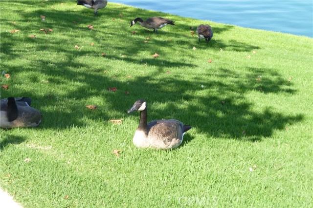 125 Greenmoor, Irvine, CA 92614 Photo 35