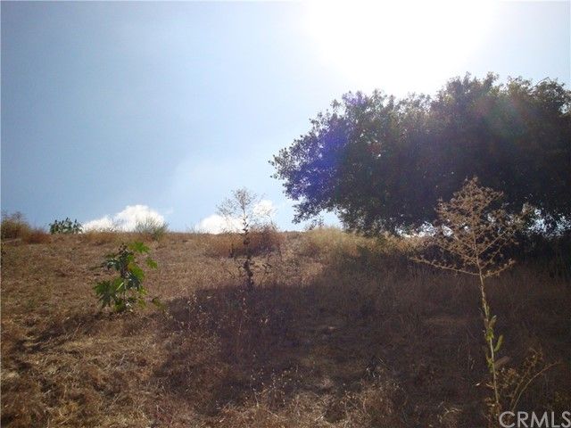 0 AREA OF CLIFTON & THOMAS, Montecito Heights CA: http://media.crmls.org/medias/72859d2e-07e8-434c-ba6f-8fc271a12908.jpg