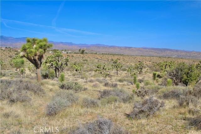 1234 Indio Avenue, Yucca Valley CA: http://media.crmls.org/medias/72886d16-995d-4685-9525-85f80c8cdd4a.jpg