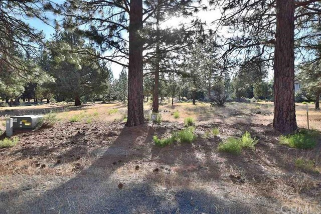 0 Lot 148 Nagle Court, Weed, CA 96094