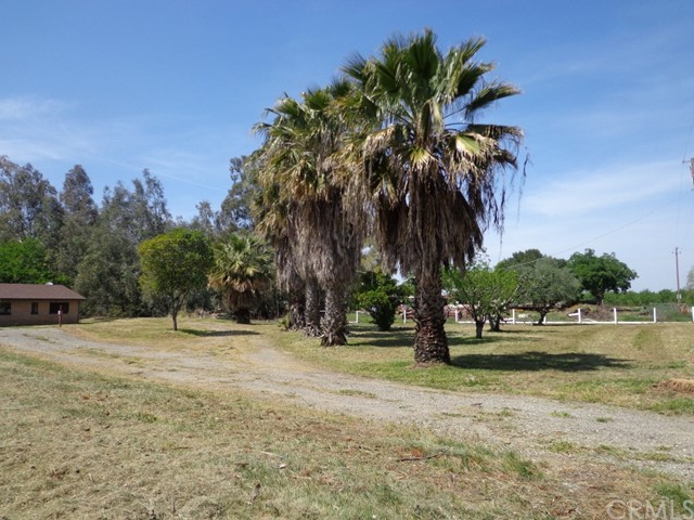 1987 County Road Kk, Willows CA: http://media.crmls.org/medias/7334c81d-9ace-4726-aa75-555026d09713.jpg
